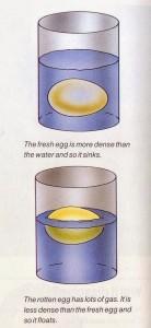 Egg test – Simple egg freshness test