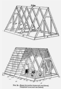 Chicken House Plans – Building A Chicken House